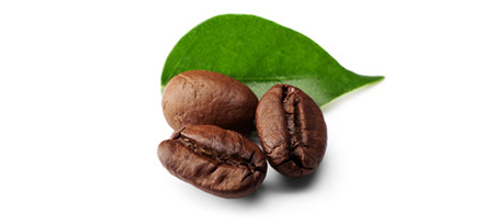 Specialty Coffees beans leaf